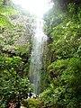 Tumagiti Falls at Mt. Isarog.jpg
