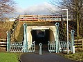 Tunnel Under M74 - geograph.org.uk - 106417.jpg