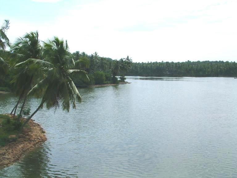 Tvm-veli-backwaters2