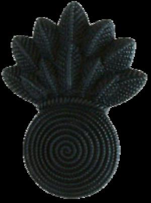 Infantry weapons officer - Image: USMC CWO Gunner (Black)