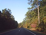 Two lanes of a four-lane divided highway in a wooded area with a brown sign on the right side of the road reading Pocomoke River State Park Shad Landing next right