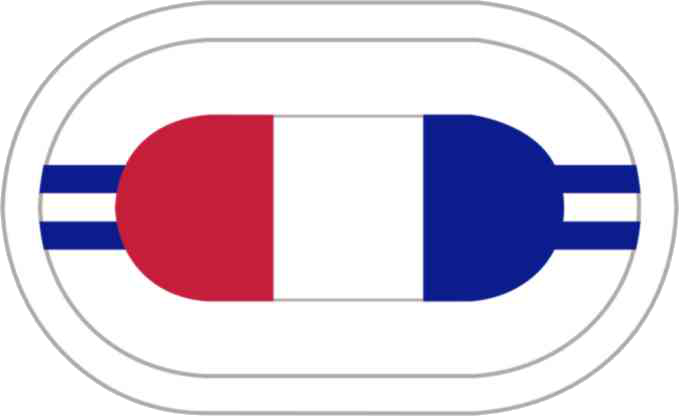 US Army 2nd BN-506th INF Reg Oval
