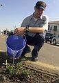 US Navy 040423-N-8977L-001 Operations Specialist 2nd Class William Scott, of Jefferson, Ohio, waters a jasmine flower.jpg
