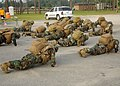 US Navy 100806-N-9564W-123 Seabees perform push-ups in gear during a battalion Readiness Exercise held on Naval Construction Battalion Center, Gulfport.jpg