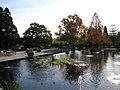 United States National Arboretum 4.JPG