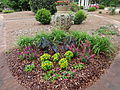 University of Georgia, Research and Education Garden flora 59.JPG