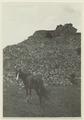 Utgrävningar i Teotihuacan (1932) - SMVK - 0307.i.0042.tif