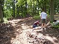 Varnhem innan munkarna kom, den 13 juni 2007, bild 2.jpg