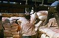 Verladung von Zucker im Hafen von Matanzsa Cuba 1973 MS Rudolf Breitscheid für DDR 3.jpg
