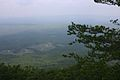 View From Highest Point.jpg