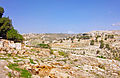 View from Beit Sahour area to Har Homa and beyond .jpg