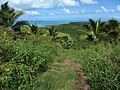 View from Maungapu (7374325028).jpg
