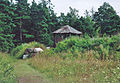 Vikingabyn-Tofta-Gotland-2010-02.jpg