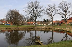 Vlčeves, common pond.jpg