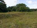 Vlakte van Waalsdorp (Waalsdorpervlakte) 2016-08-10 img. 383.png