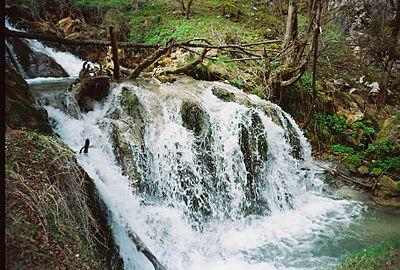 Vodopad u proleće, Gostilje, Zlatibor.jpg