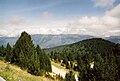 Vue au Nord en direction de la Montagne de la Tabe.jpg