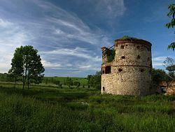 Węgierka-ruiny.jpg