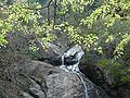 WATERFALL VALPARAI TN - panoramio.jpg