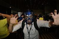 WM2015mascara ohs10.jpg