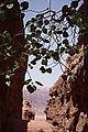 Wadi Rum - Jordanie 07-2012 (7631246118).jpg