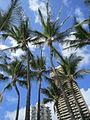 Waikiki, Oahu, Hawaii (14823008551).jpg