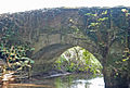 Water under the bridge near Didlington - geograph.org.uk - 591540.jpg