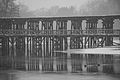 Watertown Branch trestle, Bleachery, Waltham in snow.jpg