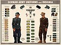 Wehrmacht uniforms and insignia.jpg