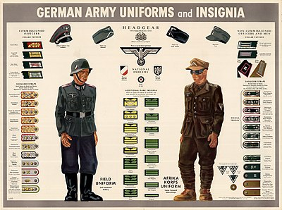 c76d7715b00bd6 Color poster showing the insignia, patches, hats and uniforms of the German  army. The poster features two figures: one is a German soldier wearing the  blue ...