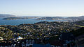 Wellington from northern suburbs - Flickr - asgw.jpg