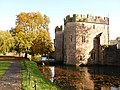 Wells, autumn tree by the Bishop's Palace moat - geograph.org.uk - 1555835.jpg