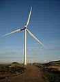 Whitelee Windfarm - geograph.org.uk - 1581488.jpg