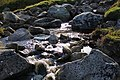 Wicklow Mountains National Park Glenealo River 10.JPG