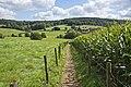 Wie sjoen os Limburg is Thats how beautiful Limburg is (7911725586).jpg