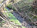 Wielkopolski Park Narodowy wiosną 2.jpg