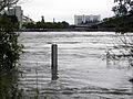 Wien - Hochwasser Juni 2013 - Pegel.jpg