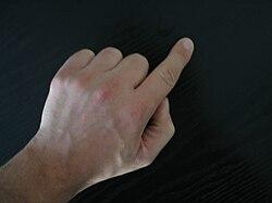 Wijsvinger.jpg