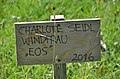 Windfrau Eos by Charlotte Seidl - sign.jpg