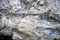 Winooski Dolomite (Middle Cambrian; Chimney Corner, Vermont, USA) 6.jpg