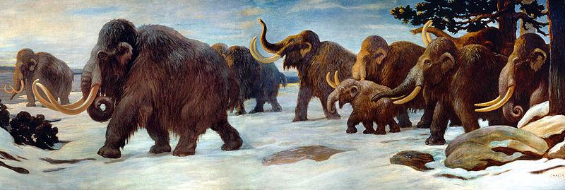 File:Wooly Mammoths.jpg