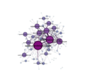 Wp-ggml-2014-network-labeled.png