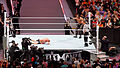 WrestleMania 31 2015-03-29 19-56-46 ILCE-6000 0125 DxO (18112991082).jpg