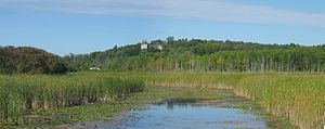 Wetland - Marshes develop along the edges of rivers and lakes.