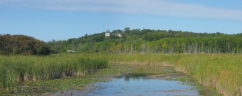 Wye Marsh panorama1