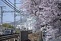 Yamatecho, Higashiosaka, Osaka Prefecture 579-8022, Japan - panoramio.jpg