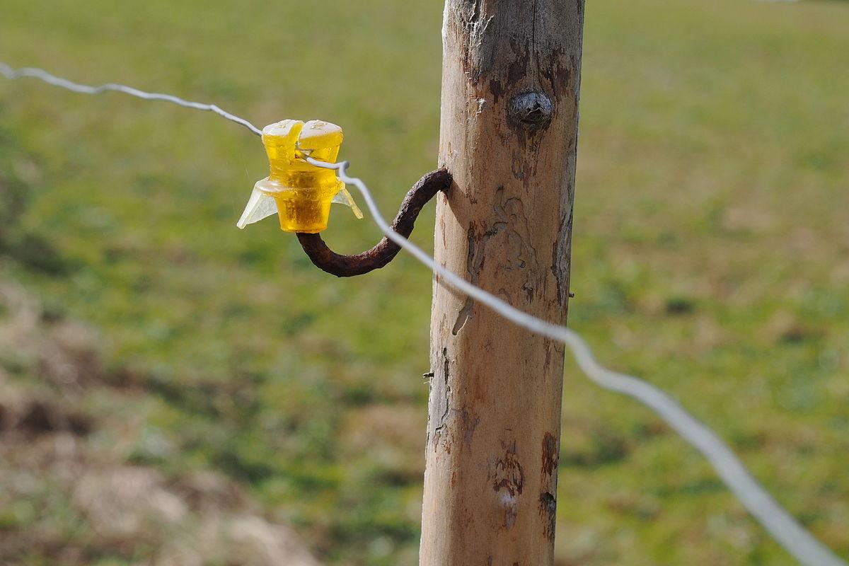 piquet pour clôture électrique