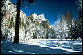 Yosemite National Park YOSE8123.jpg