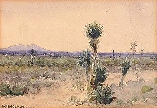 Yuccaland--Chihuahua, Mexico