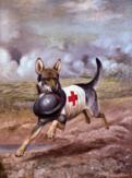 Milosrdný pes nesoucí helmu vojáka (1918)